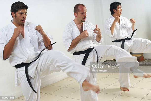 Two mid adult men with a young man practicing karate