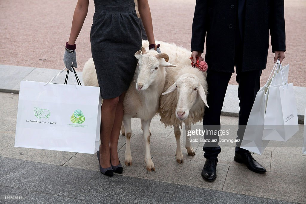 Two models hold two sheep during Wool Week 2012 inaguration at Colon Square on November 21, 2012 in Madrid, Spain.