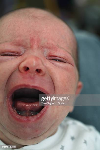 A two month old baby girl baby crying and screaming Photo Tim Clayton