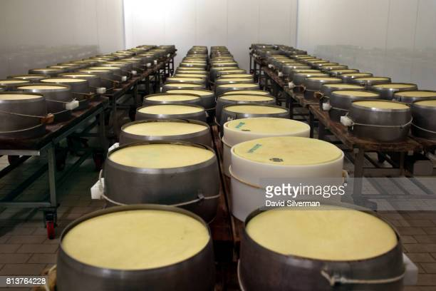 Two onedayold wheels of cheese still wrapped in their white stencilling bands with prepunched dots bearing the inscription PARMIGIANOREGGIANO the...