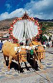 Two oxen pulling decorated cart, El Romeria Festival, Benalmadena, Spain