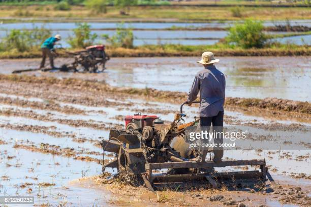 Two Peasants plowing, in La Gi district, at the beginning of the rainy season in April