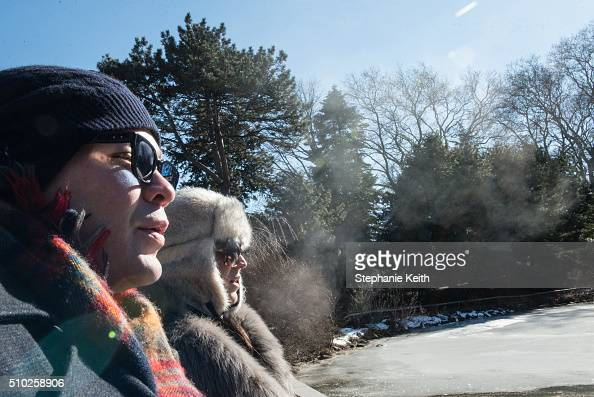 Two people look out at the frozen pond at the Brooklyn Botanic Garden during an arctic chill that brought frigid temperatures on February 14 2016 in...