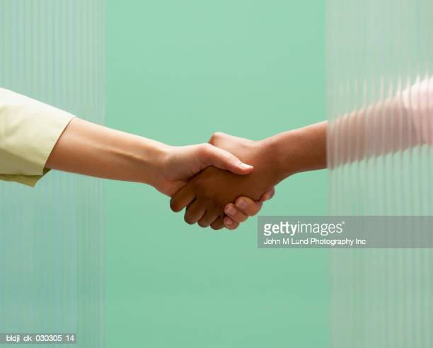 Two people shaking hands with each other