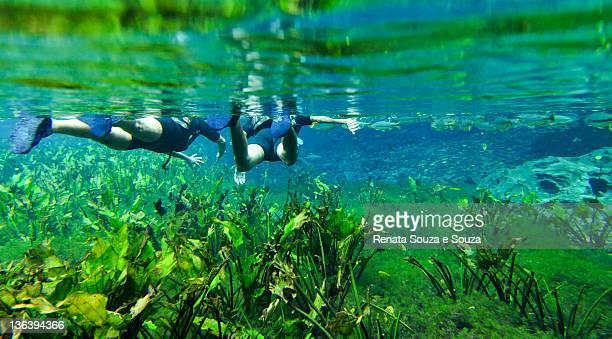 Two people snorkeling at natural aquarium