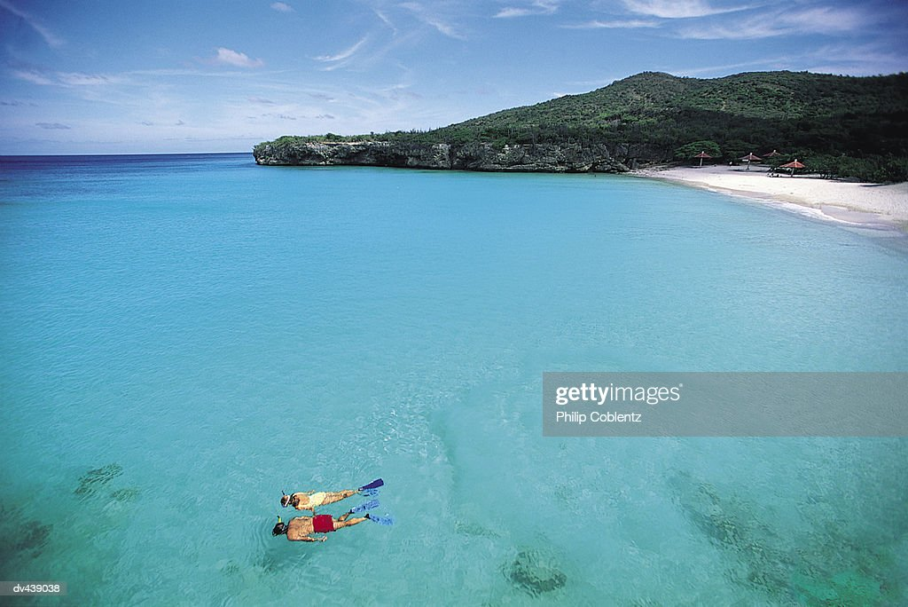 Two people snorkeling off coast of tropical island