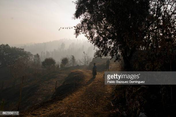 Two people walk with their buckets as the landscape is burnt near Penacova on October 17 2017 in Coimbra region Portugal At least 37 people have died...
