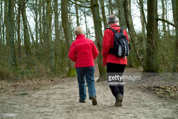Two people walking in the wood seen on their backs