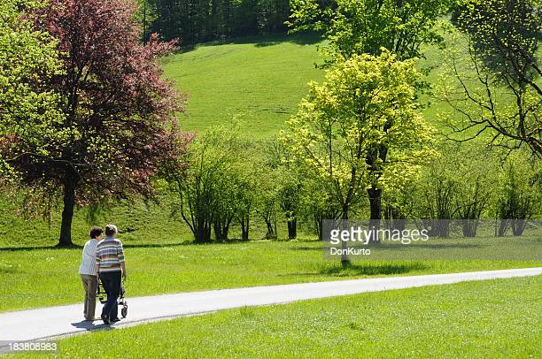 Two people with a baby stroller walking along a park path