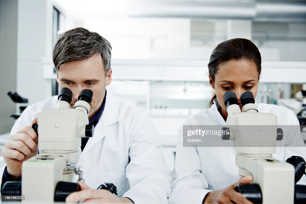 Two persons using microscopes in laboratory : Stock Photo