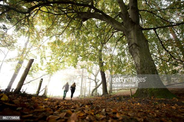 Two persons walk in the foggy morning near lake Grunewaldsee on October 18 2017 in Berlin Germany