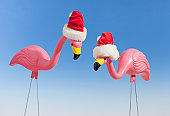 Two plastic rpink flamingoes, wearing santa hats