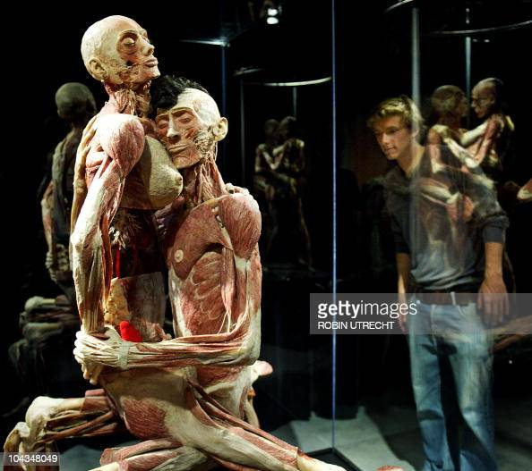 Celebrate the wonder of the human form at BODIES THE EXHIBITION. A phenomenal look at the phenomena we call the human body. THE EXHIBITION. A phenomenal look at the phenomena we call the human body/5().