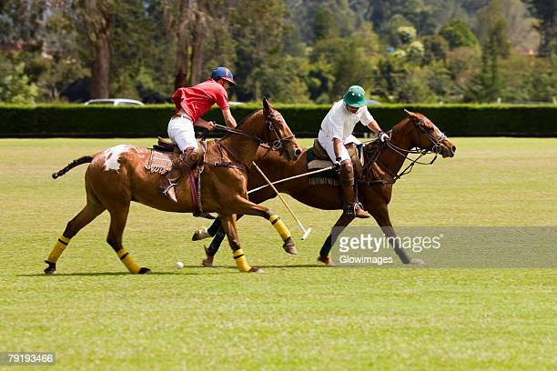 Two polo players playing polo