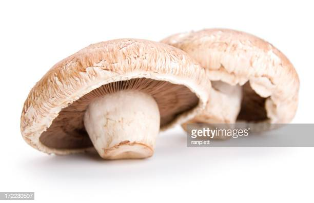Two Portabello Mushrooms Isolated on a White Background