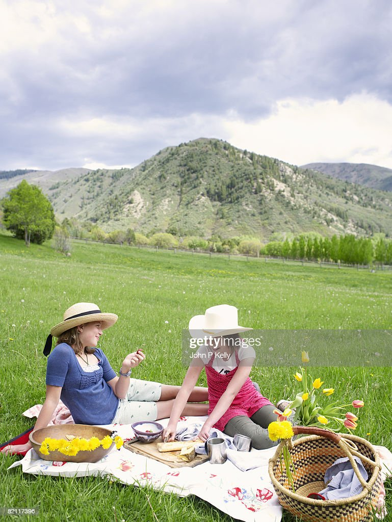 Multi-ethnic Group Of Women Enjoying Picnic In The Countryside ...