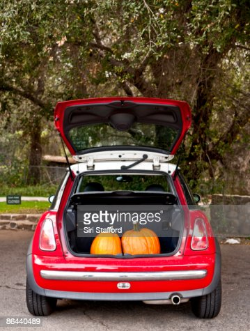 Two pumpkins in the trunk of a car