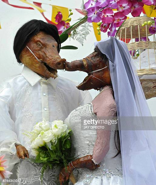 Two roasted pigs wear the costumes of bride and groom to be paraded through the La Loma district of the Manila on May 17 as part of an annual...
