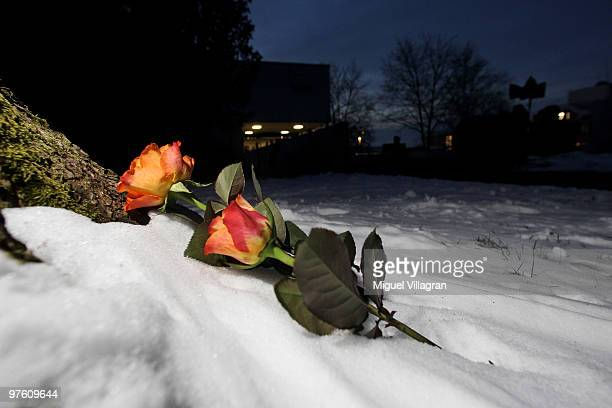 Two roses are pictured in the snow in front of the Albertville School on March 10 2010 in Winnenden Germany Tim Kretschmer opened fire on teachers...