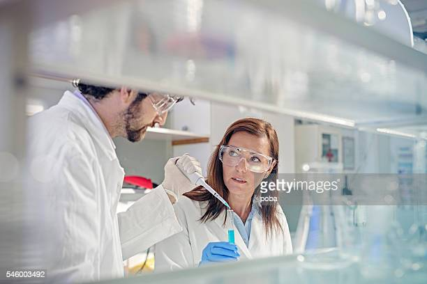 two scientist in the laboratory