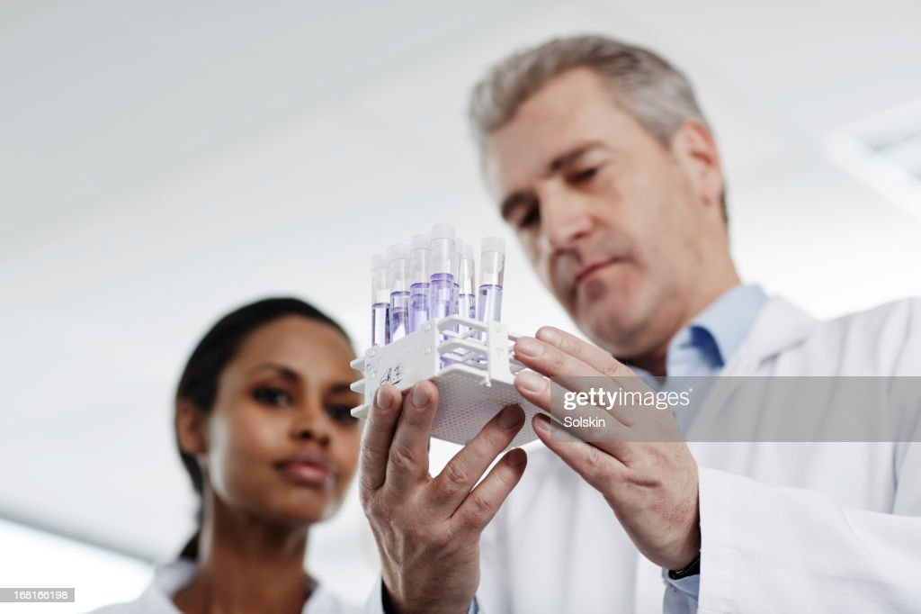 Two scientists examining laboratory samples : Stock Photo