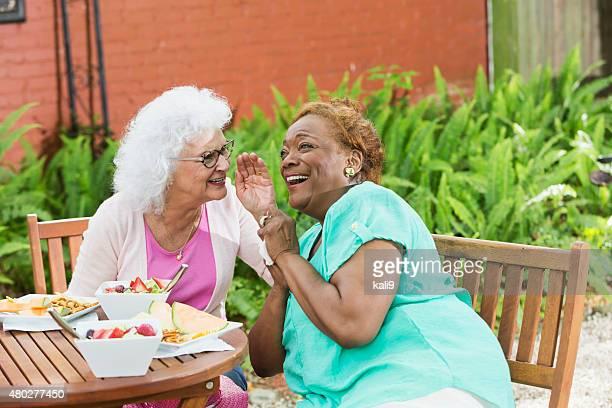 2 つの高齢者の女性が gossiping 昼食、