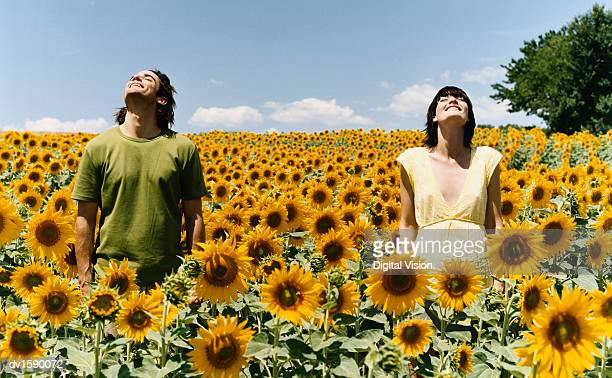 Two Serene People Standing with Their Eyes Closed in an Abundant Field of Sunflowers