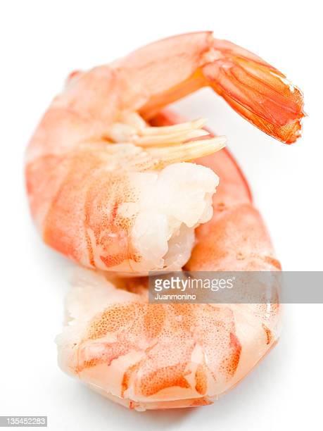 Deux des crevettes sur fond blanc