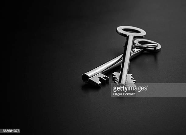 Two silver brass keys