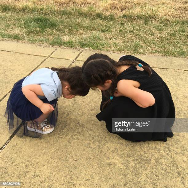 Two sisters 3 years and 5 years old watching a little bug on the sidewalk.