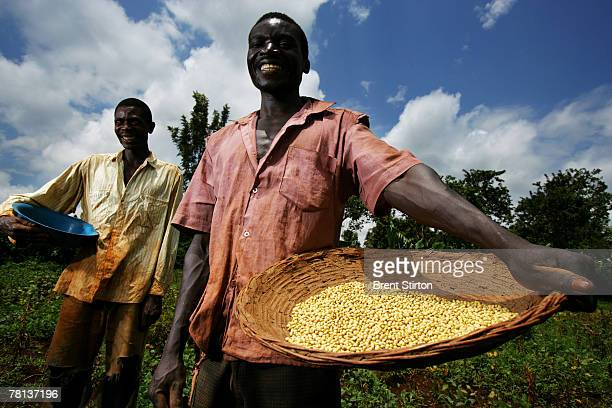 Two soy farmers stand with their product on their small plot of land in the Sauri Millenium village locale September 11 2007 in Kisumu Kenya The...