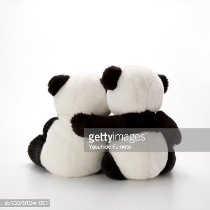 Two stuffed panda bear hugging, rear view, studio shot