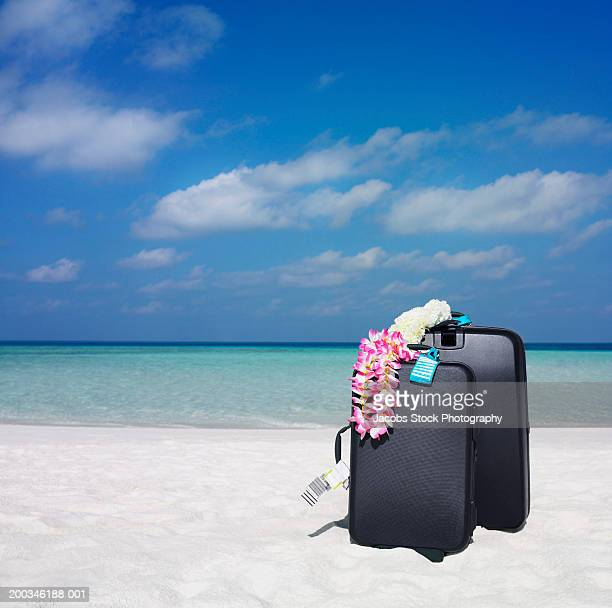 Two suitcases draped with lei on sandy beach