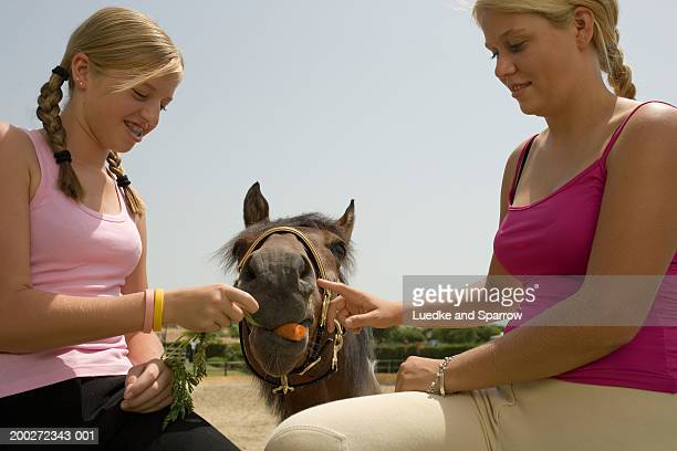 Two teenage girls (15-17) sitting on fence feeding carrots to horse