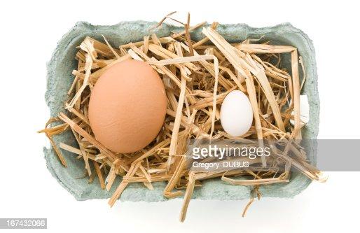 Dos muy diferentes de Pascua Aislado en blanco : Foto de stock