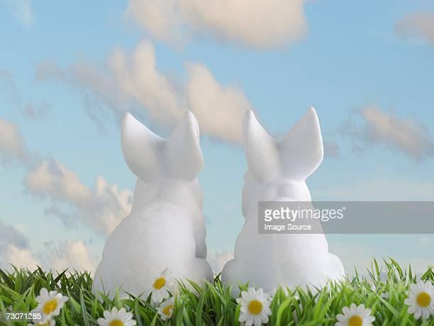Two white rabbits