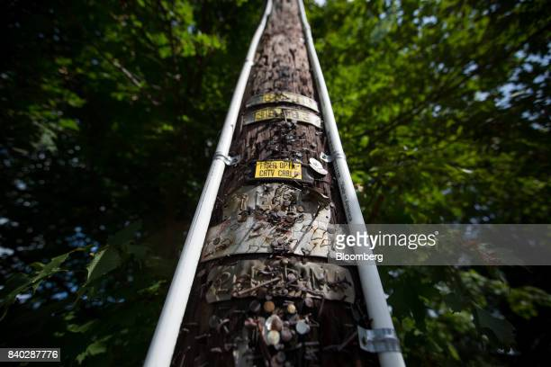 Two white strips of 1inch conduit pipe denoting an eruv are seen on a utility pole at the corner of Airmont Road and Airmount Road in Mahwah New...