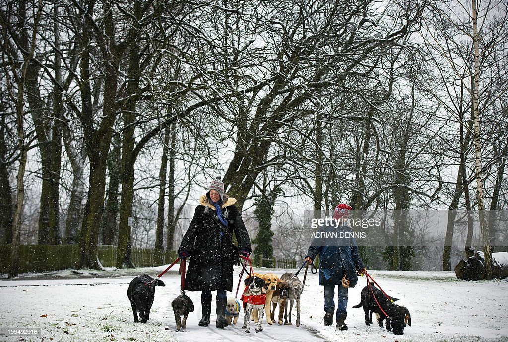 Two woman walk dogs in the snow at Alexandra Palace in London on January 14, 2013. Snow hit parts of England with up to 10cm expected to fall in some areas, prompting fears of travel chaos. AFP PHOTO/ADRIAN DENNIS