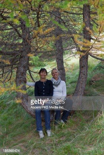 Two women friends sit in crook of alpine tree : Stock Photo