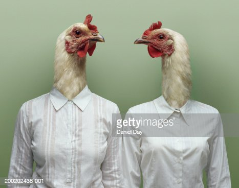 Two women metamorphosised into hens (Digital Composite) : Stock Photo