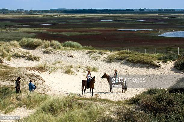 Two women on horseback and tourists in the dunes of nature reserve the Zwin along the North sea coast at Knokke Belgium