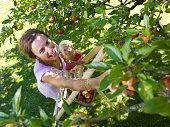 Two women picking apples, one standing on ladder, smiling