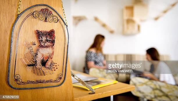 Two women sit in the first cat cafe in Amsterdam the Netherlands as a sign bearing a cat hung on a wall on April 21 2015 Already popular in Tokyo...