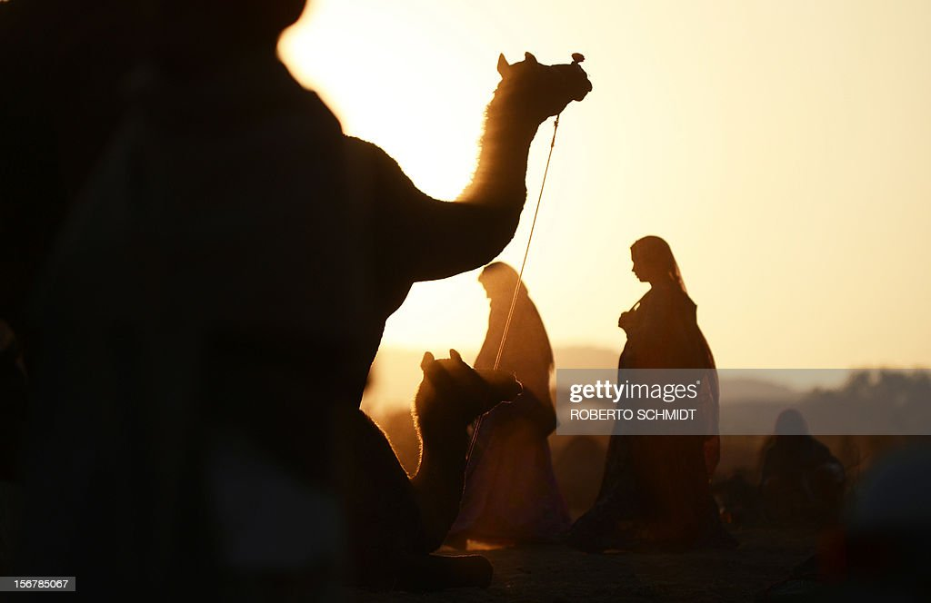 Two women walk past camels for sale at sunrise at a camel fair grounds on the outskirts of Pushkar on November 21, 2012. The annual five-day camel and livestock fair, held in the town of Pushkar in the state of Rajasthan is one of the world's largest camel fairs, and apart from buying and selling of livestock it has become an important tourist attraction. AFP PHOTO/Roberto Schmidt