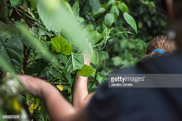 Two women walking in the jungle
