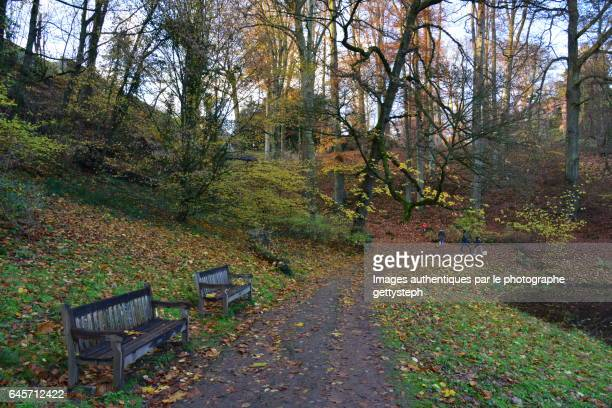 Two wooden benches in front of main pond in autumn