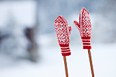 Two woolly gloves on ski poles