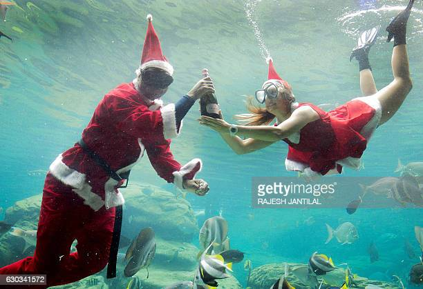 Two workers dressed as Santa Claus gesture as they swim in a fish tank during a show at Africa's largest marine theme park the South African Marine...