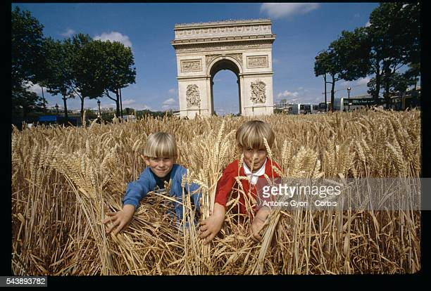 Two young boys peek through wheat stalks on a wheat field on Avenue des ChampsElysees the main street in Paris during a oneday harvest festival The...