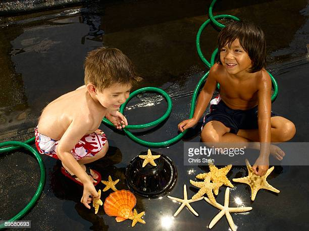Two Young Boys playing with seashells